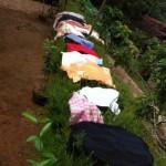 La lavanderia .......